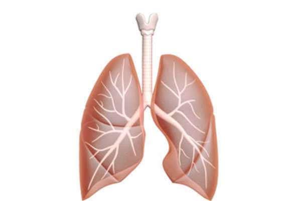 cancer pulmonar por asbesto