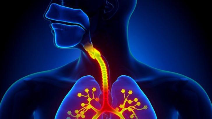 Elixirul pentru fumători! Remediu natural pentru curățarea plămânilor - Antena Satelor