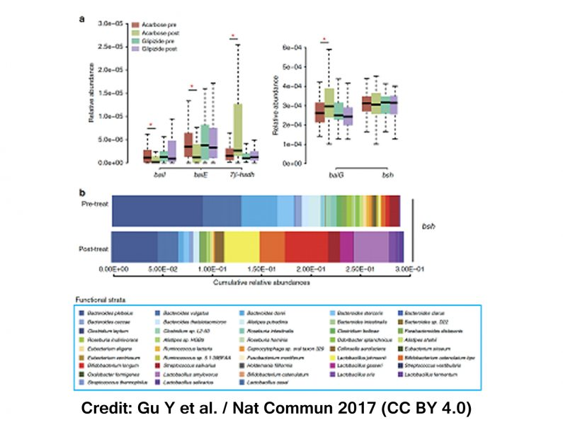dysbiosis of gut microbiota