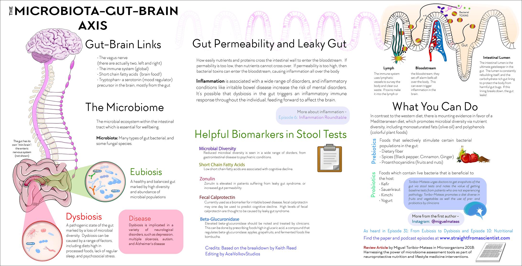 dysbiosis serotonin