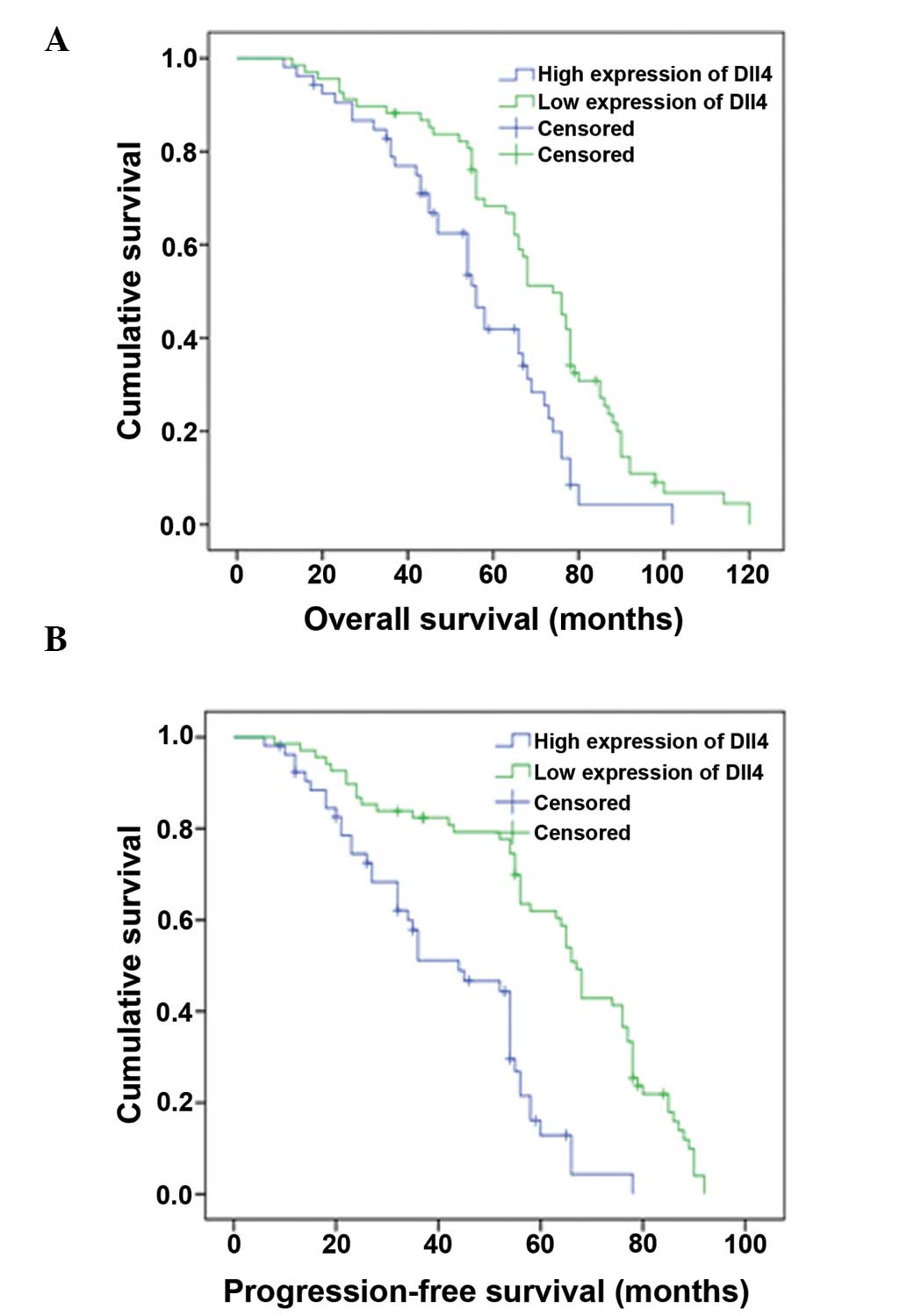 renal cancer recurrence rate)