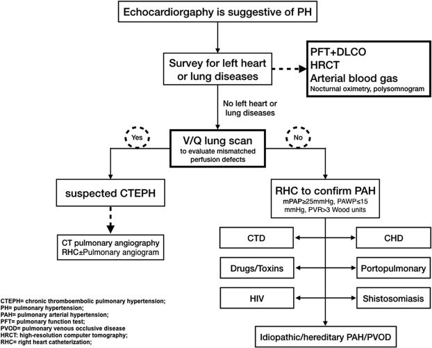 schistosomiasis and pulmonary arterial hypertension and hemodynamics guidelines review