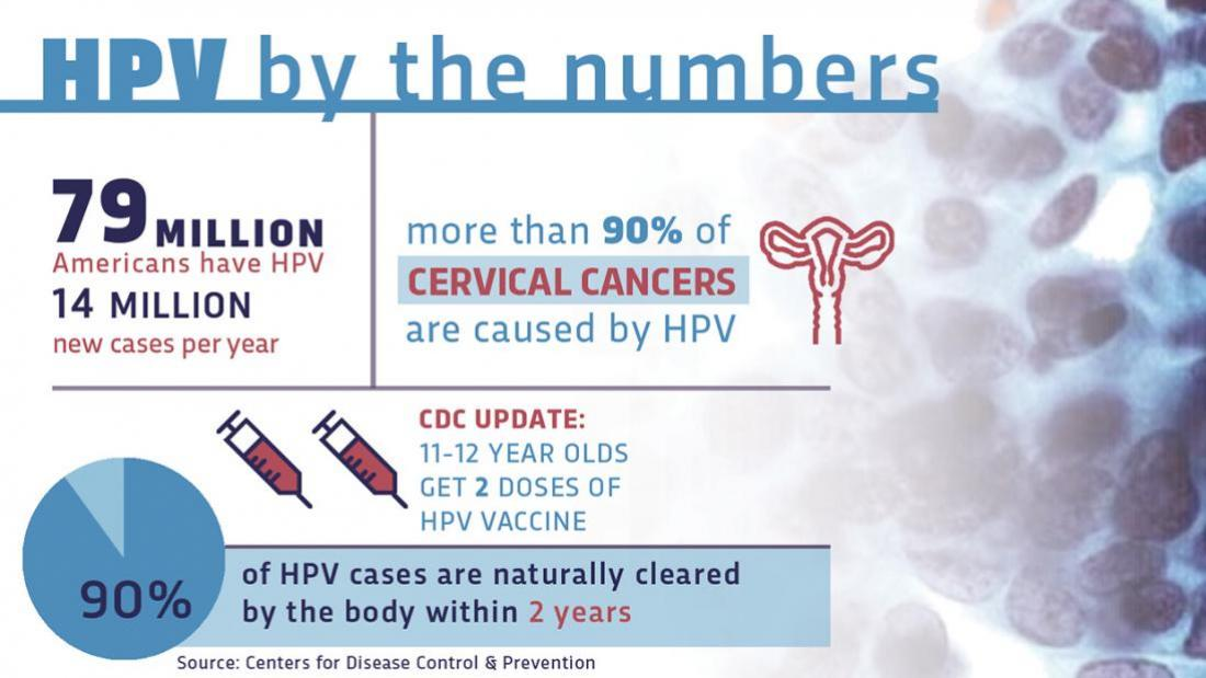 hpv vaccine components)
