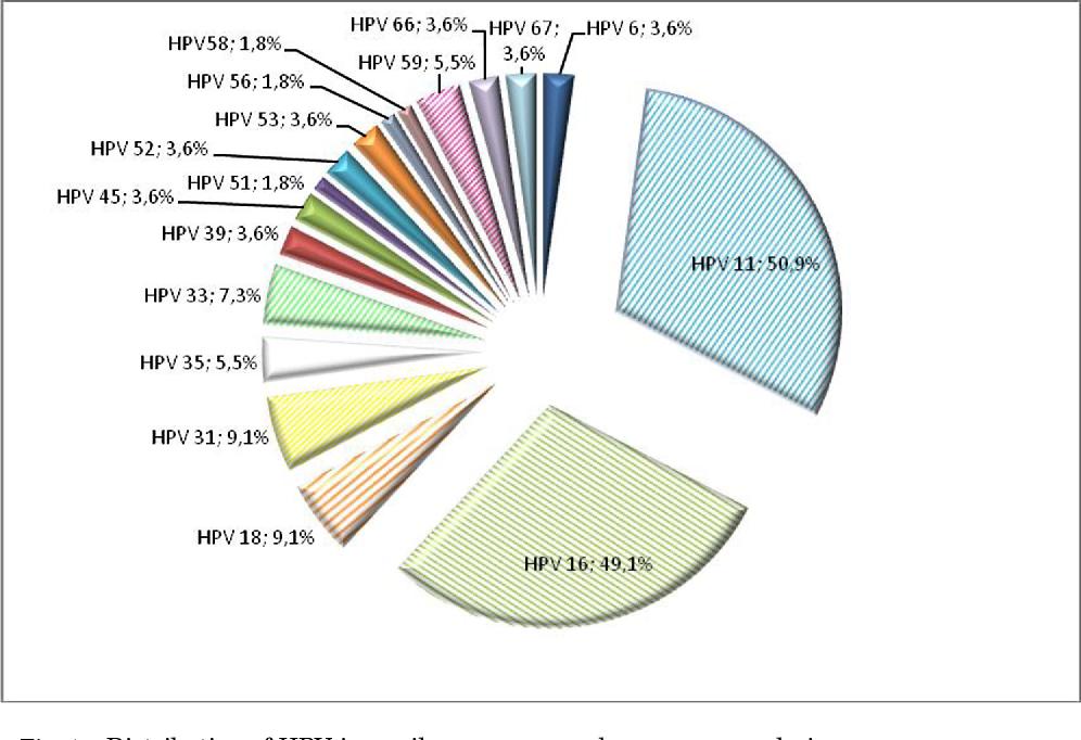 HPV (Human Papilloma Virus) afectează sarcina și nașterea? - Totul Despre Mame