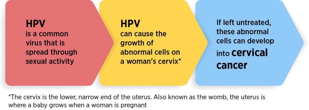 human papillomavirus can cause cancer)