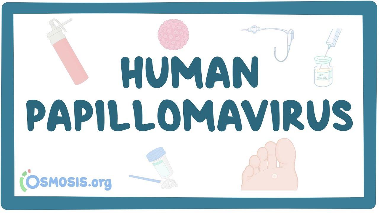 Conferinţa Societăţii Române de HPV – abstracte