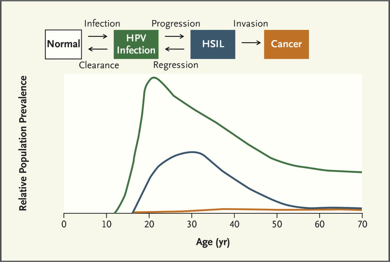 human papillomavirus transmission methods