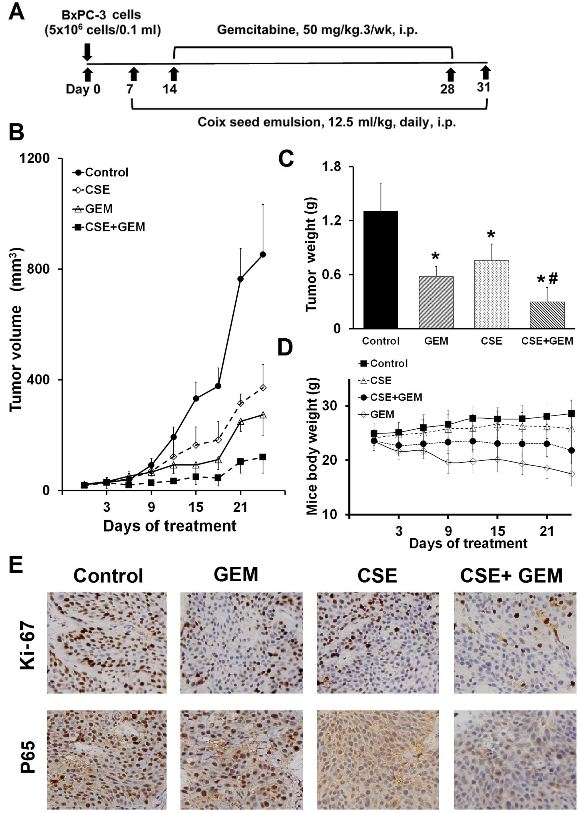 cancerul de san metastatic ciuperci kg pret