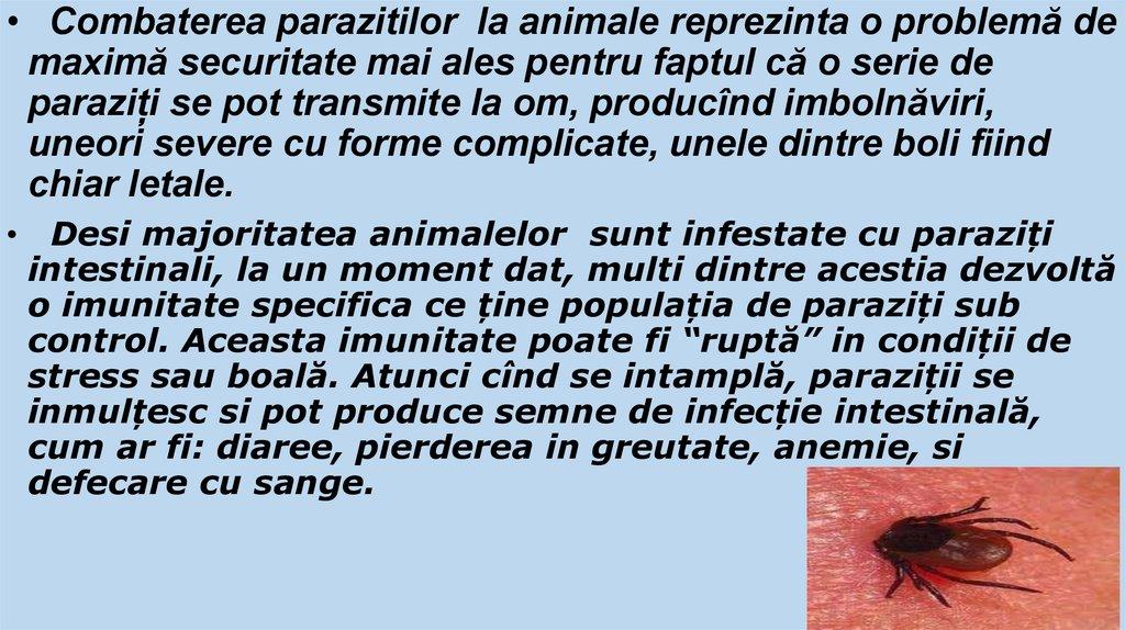 paraziti intestinali la oi