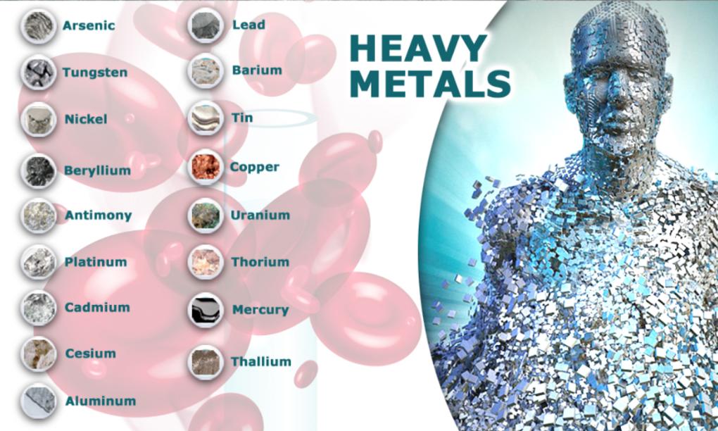 toxine in the body