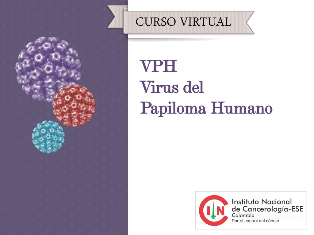 virus del papiloma humano ppt